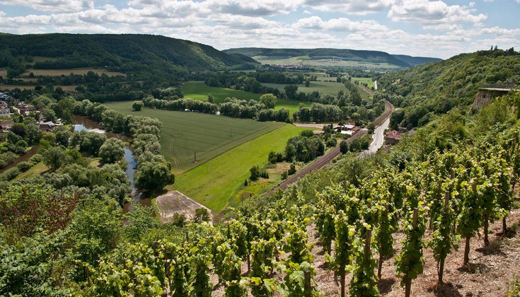 00-,-Blick-ins-Saaletal-von-Dornburg,Klaus-Enkelmann--6786