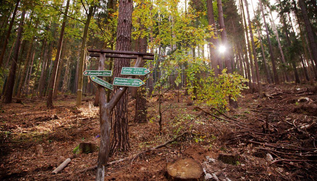 Schilder im Wald, Waldhotel Linzmühle