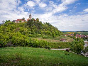 5 Leuchtenburg mit Weinberg
