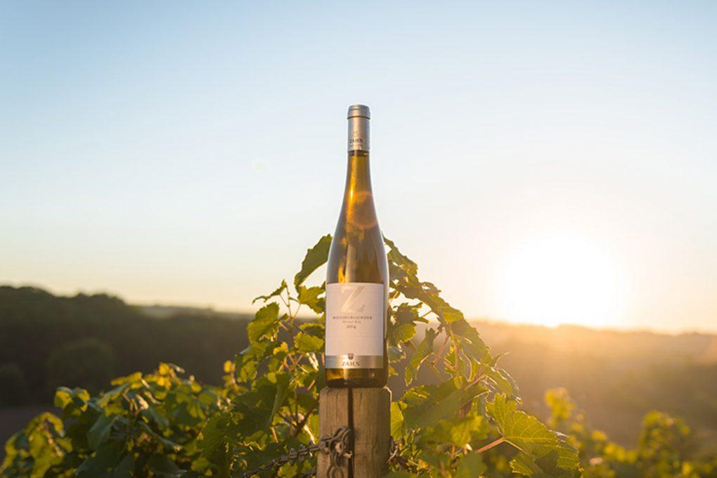 Der edle Tropfen: Thüringer Wein