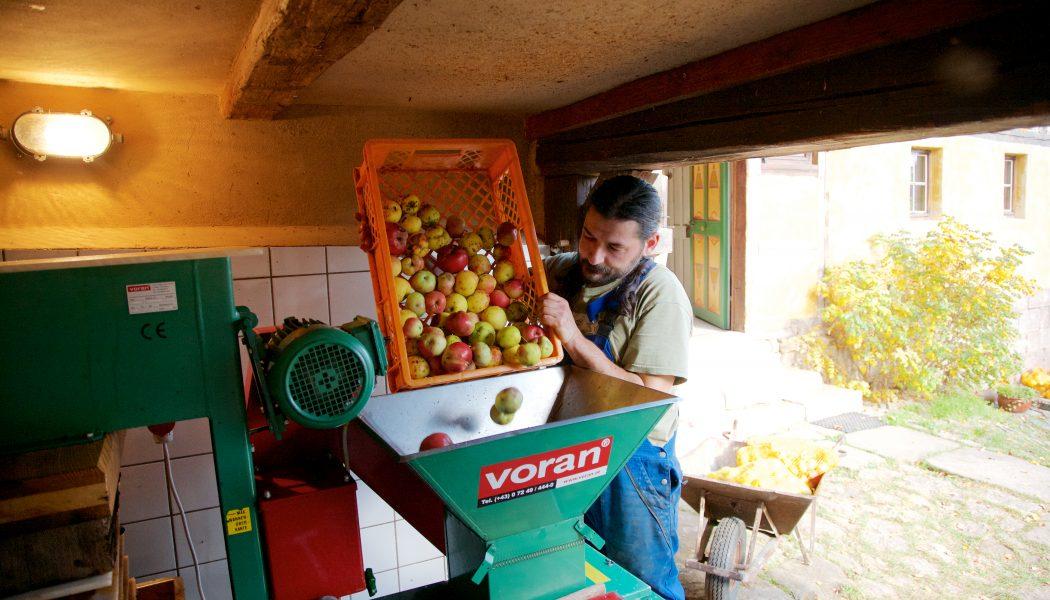 Obstweinherstellung in der Obstweinkellerein Röttelmisch