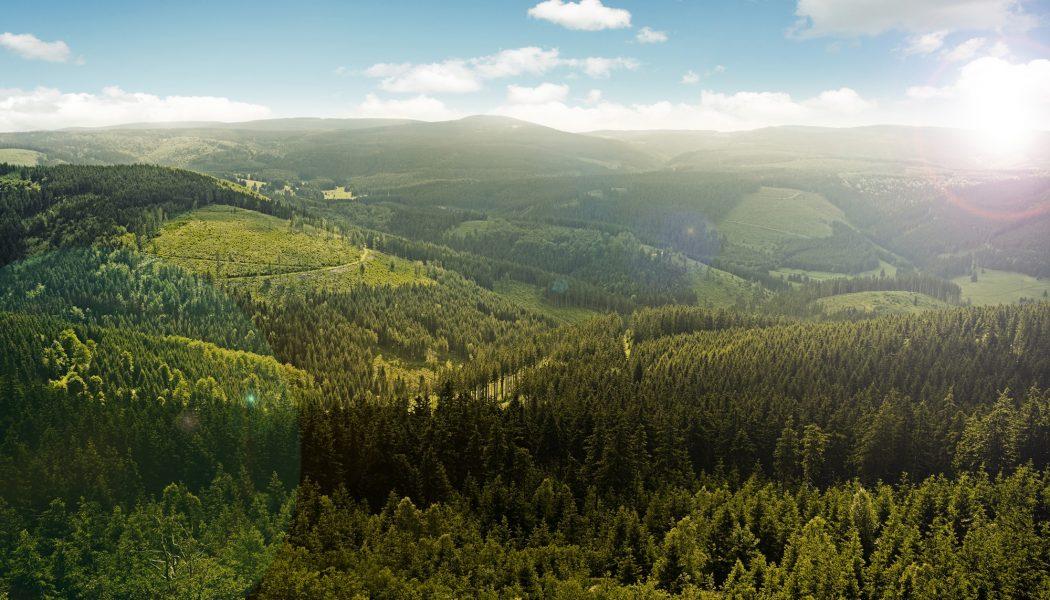 Thueringer_Landschaft